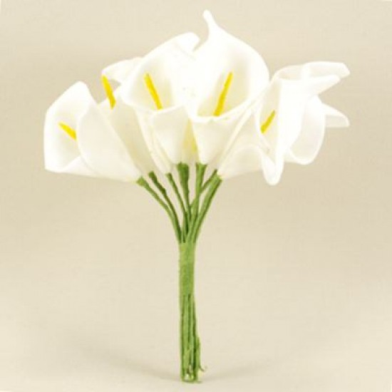 Gala Çiçeği Beyaz Lateks Büyük Boy 10 Adet