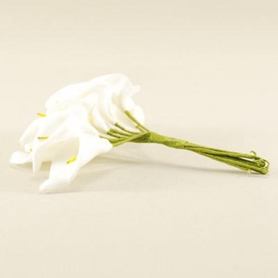 Gala Çiçeği Beyaz Lateks Küçük Boy 10 Adet